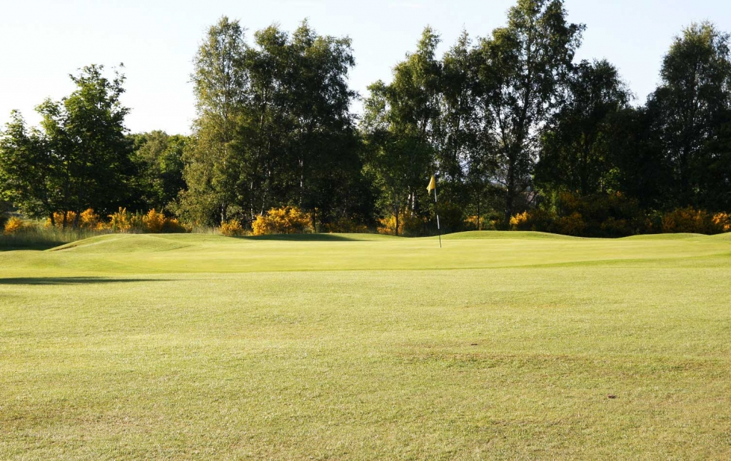17th hole green Cattle Market
