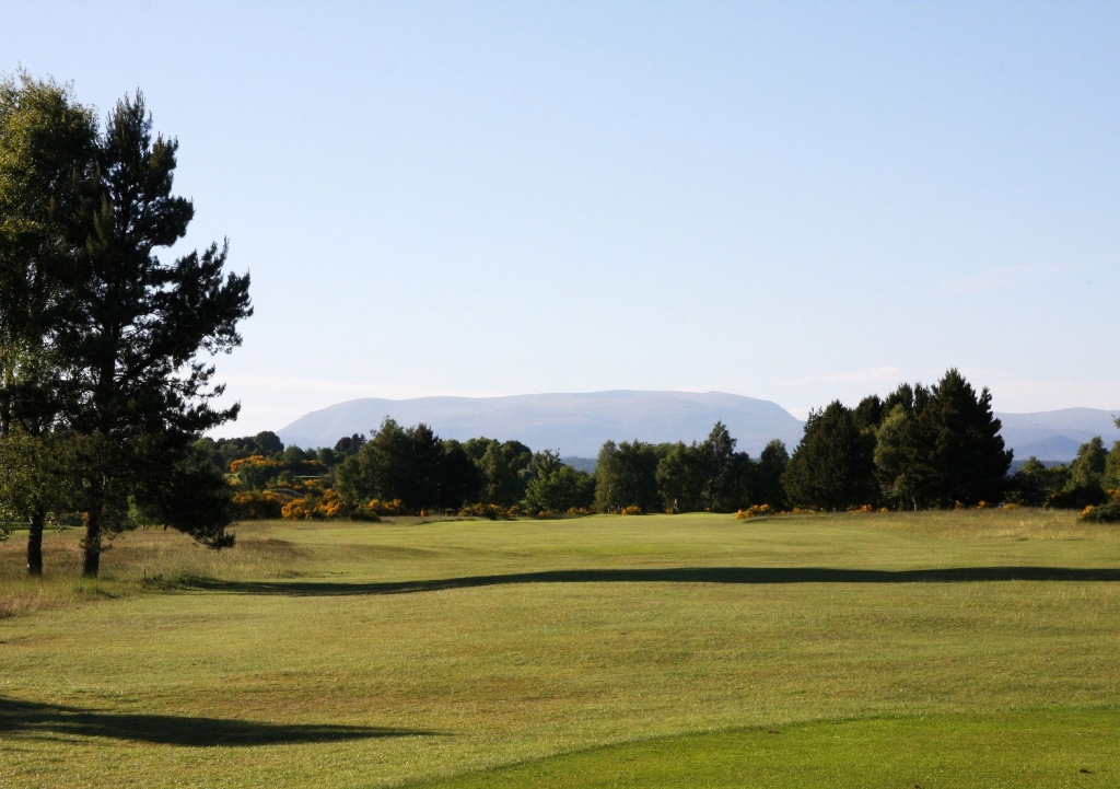 17th hole tee, Cattle market