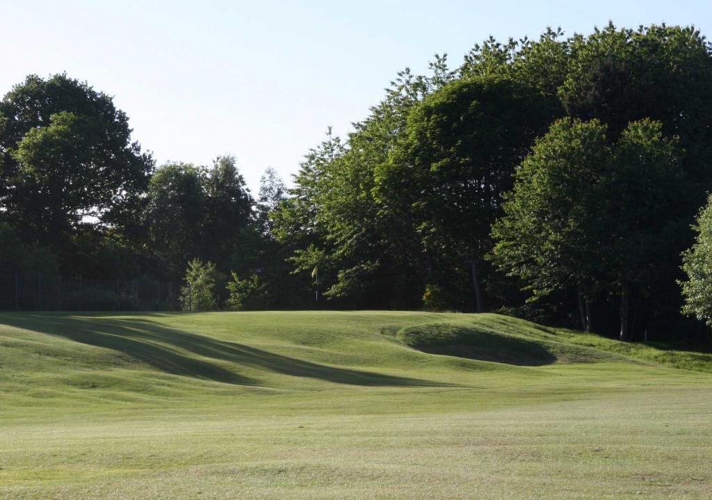 18th hole green - Home