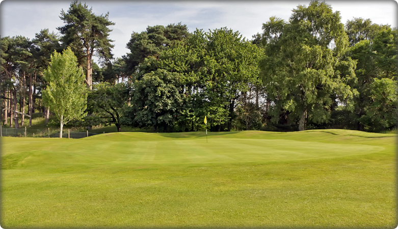 11th green, The Rookery